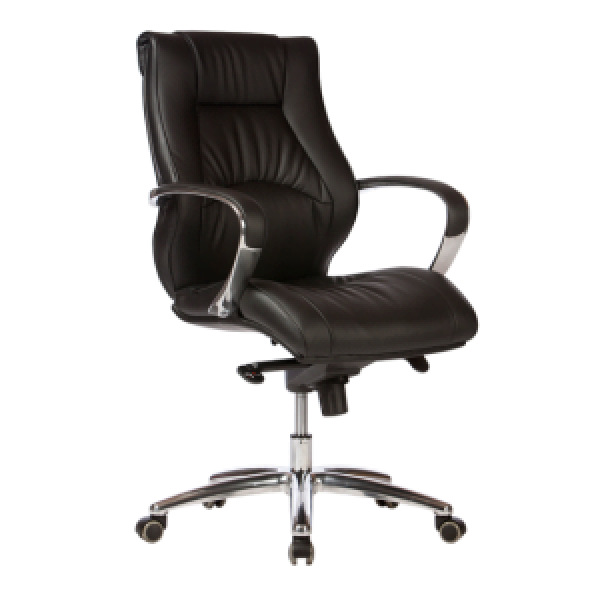 adjustable Camry Executive Chair
